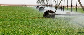 تطوير الزراعة