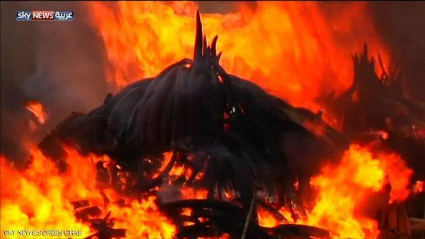 حرق العاج