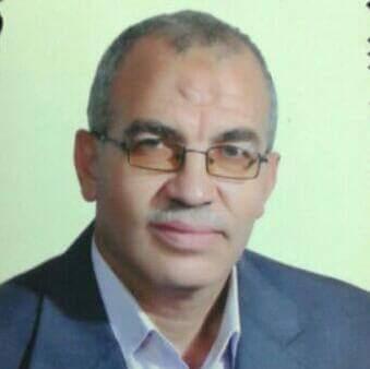 هشام السيسي
